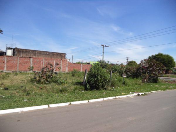 Terreno, Rio Branco, Canoas (BD2262) - Foto 3
