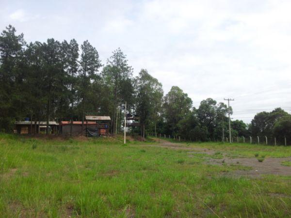 Terreno, Centro, Nova Santa Rita (BD2285) - Foto 4