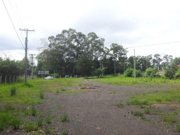Terreno, Centro, Nova Santa Rita (BD2285) - Foto 5