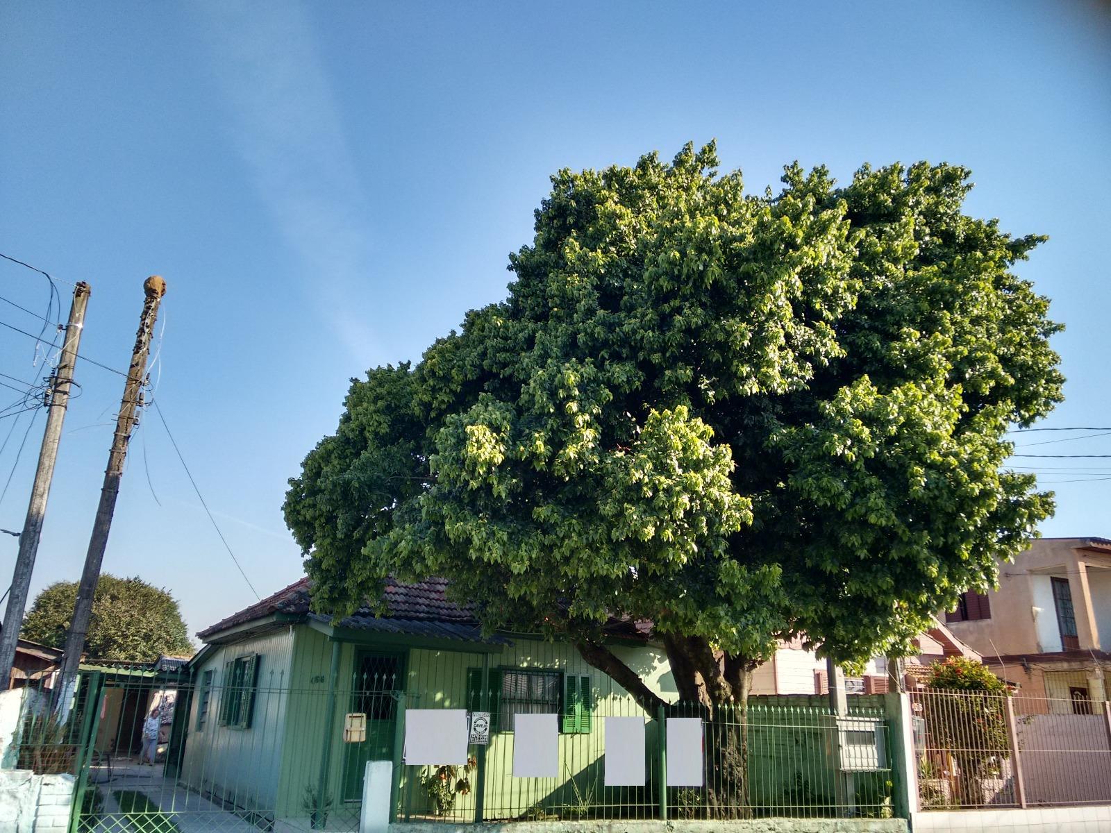 Terreno, Harmonia, Canoas (BD2471) - Foto 3