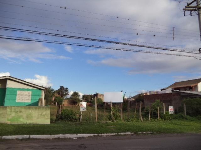 Brandalise Imóveis - Terreno, Rio Branco, Canoas - Foto 3