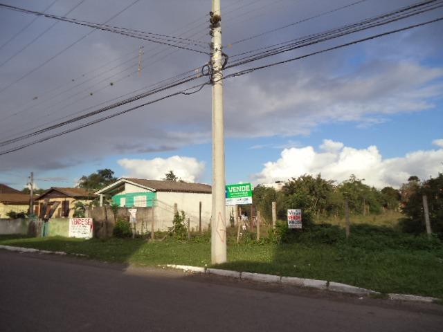 Brandalise Imóveis - Terreno, Rio Branco, Canoas - Foto 5
