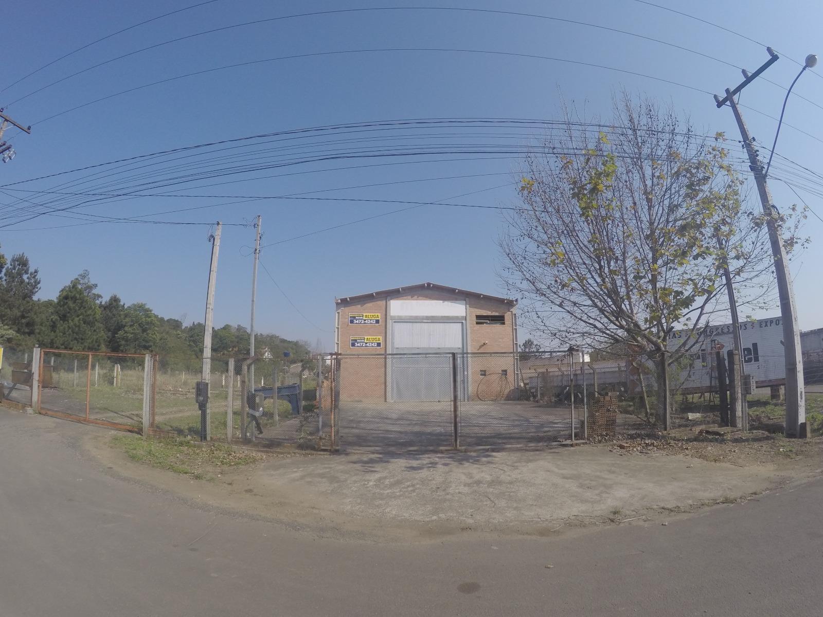 Brandalise Imóveis - Galpão, Centro (BD3221) - Foto 2