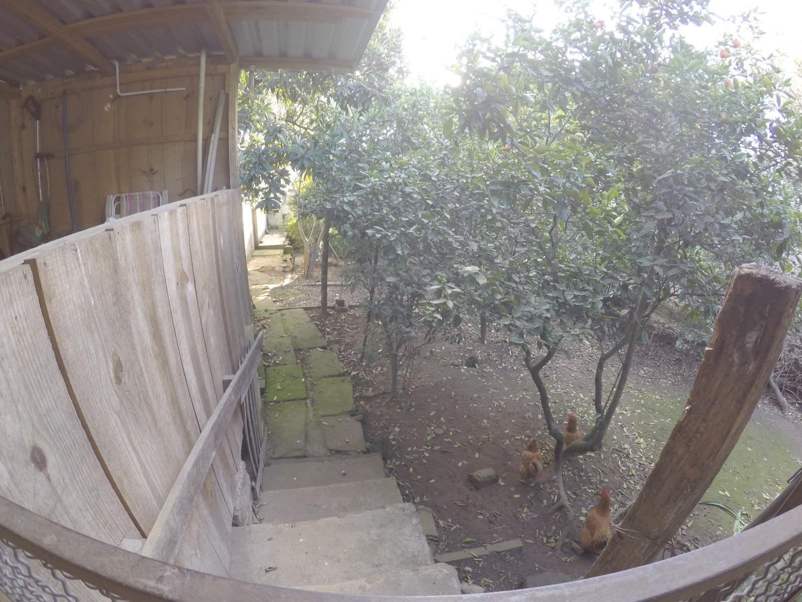 Casa 3 Dorm, Nossa Senhora das Graças, Canoas (BD3231) - Foto 7