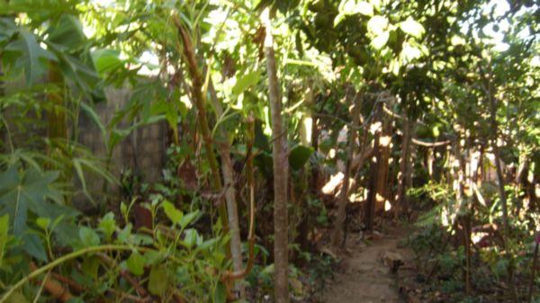 Casa 4 Dorm, Niterói, Canoas (BD861) - Foto 3